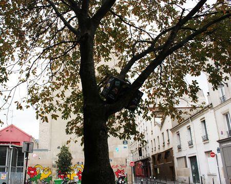Street art forge royale une valise dans un arbre