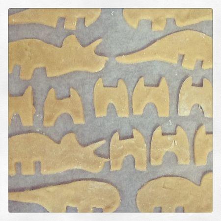 Biscuit dinos prêtes à cuire