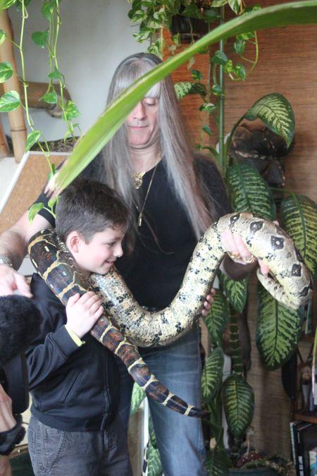 Nils jeff et le python
