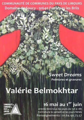 Exposition Valérie Belmokthar