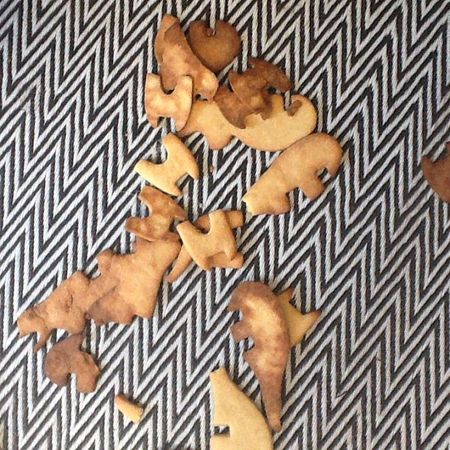 Biscuits dinos tricé