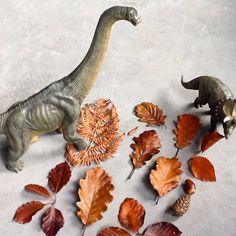 Dinovember automne fall