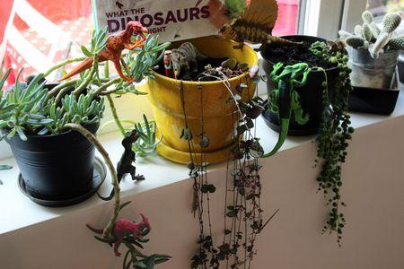Dinovember dinos et succulents