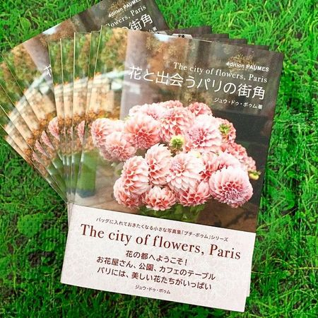 Paumes livre the city of the flowers