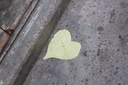 JOUR 317 Coeur sur trottoir