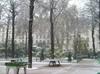 P1010001_square_trousseau_sous_la_neige_