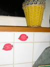 P1010023_une_invasion_de_poissons_rouges